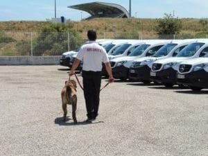Grdiennage - Sécuriser un parc de véhicules de concessions automobiles